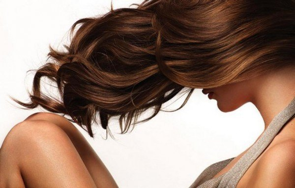 Stop Hair Loss By Using This Amazing Leaves