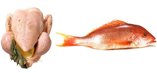 ChickenFish-Threonine