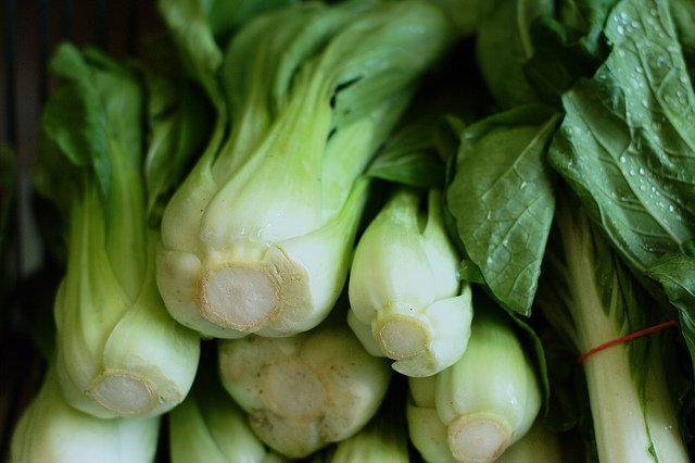 Why You Should Add More Bok Choy Into Your Diet
