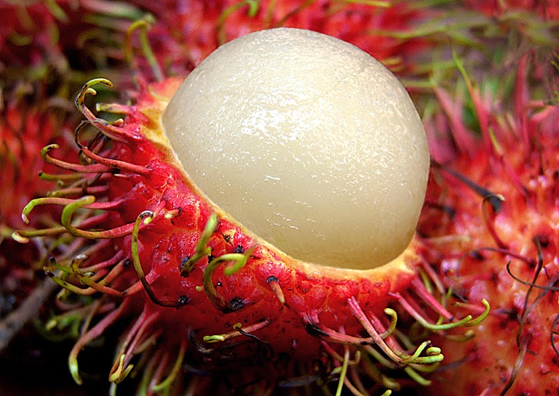 health-benefits-of-rambutan