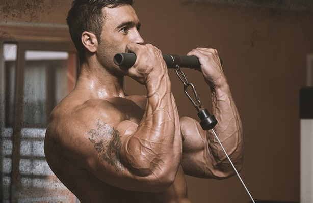 Cable_Biceps