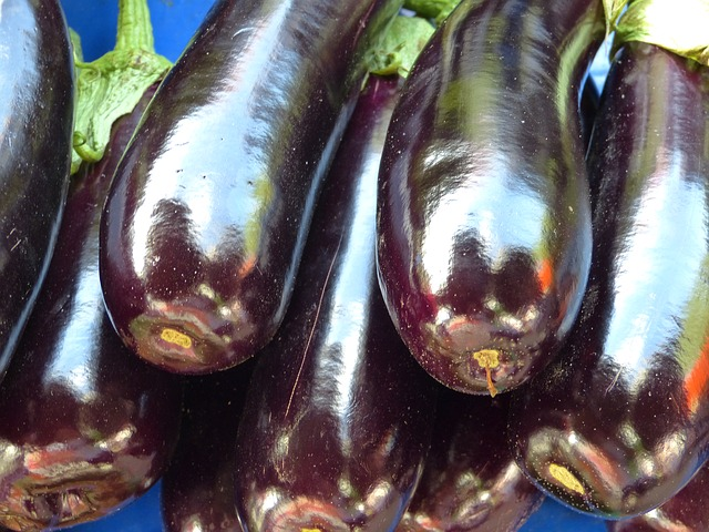 Health-Benefits-of-Eggplant-Juice