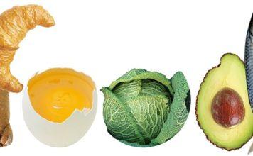 choline rich foods