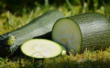zucchini-health-benefits