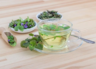herbal teas for UTI