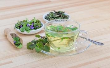 herbal teas for UTI