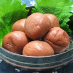 Japanese plum health benefits