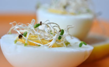 alfalfa sprouts benefits