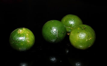 health benefits of calamansi juice