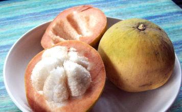 health benefits of santol