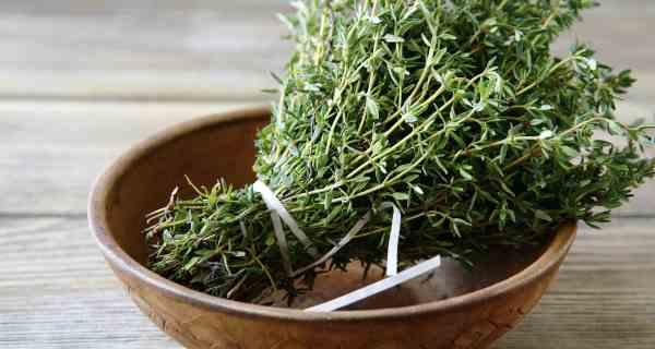 thyme health benefits