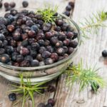 juniper berry benefits
