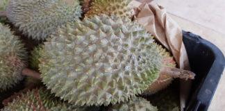 durian health benefits