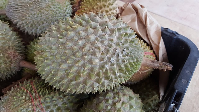 durian health benefits