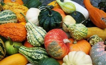 pumpkin-skin-benefits