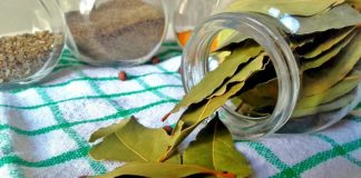 uses of bay leaf