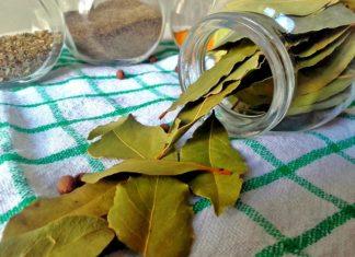 uses of bay leaf