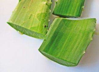 aloe vera for diabetes