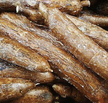 health benefits of arrowroot