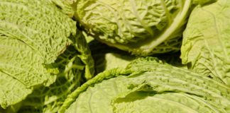 cabbage for colon cancer prevention