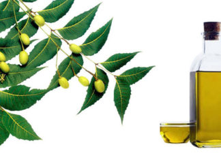 Neem_Oil beauty benefits