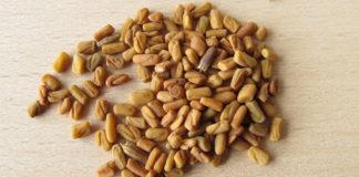 fenugreek-seeds-for-diabetes