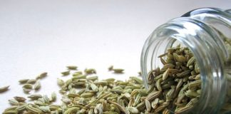 fennel seeds for weight loss