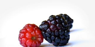 benefits of mulberries